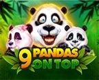 9 Pandas on Top